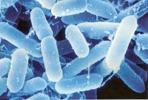 足に潜むバクテリアのイメージ